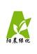 广州哪里有供应年桔年花橘子树年桔盆景购置配送服务