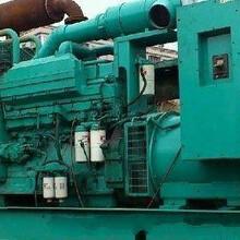 杭州发电机出租\24小时在线图片