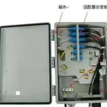 销售优质塑料室外壁挂式48芯光纤分纤箱图片