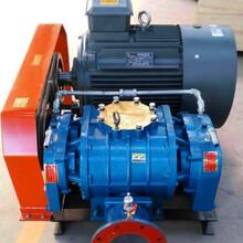 罗茨风机11KW山东厂家直销污水处理管道气力输送增氧养殖图片