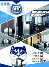 北京第三代玻璃狗指紋密碼鎖,玻璃狗玻璃門雙開辦公室智能密碼鎖圖片