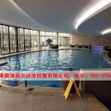 重庆泳池设备厂家-碧浪菲尔