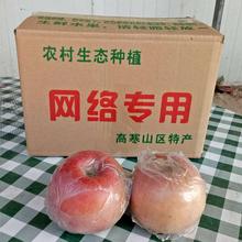 灵宝市仙姑塬苹果10斤36元河南省内包邮