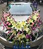 南宁国际会展中心送花