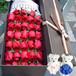 廣西大學花店廣西大學哪有花店送花束1529656)4995禮盒裝鮮花
