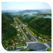 宁波专业做可行性研究报告公司图片