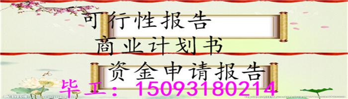 丽江代写商业计划书编写的模板计划书