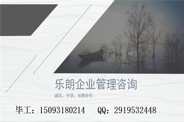 龍鳳可以寫可行性報告龍鳳公司-可行