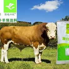 肉牛预混料5%肉牛猛催肥预混料