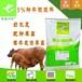 基础母牛饲料,基础母牛专用的产品