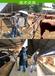繁殖母牛飼料簡單配制配方表母牛營養預混料