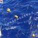 云浮环保塑料浮球最新价格查询