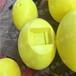 商丘水位观测警示浮球哪里最好
