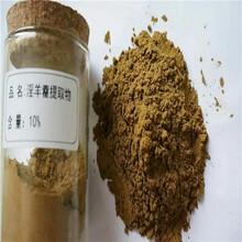 巴西榥榥木提取物天然伟哥之蒺藜皂苷淫羊藿粉达米阿那粉天堂种子