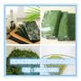 海苔粉、脱水海苔片80目青海台粉幼儿营养食品原料厂家直销固原浩宇图片