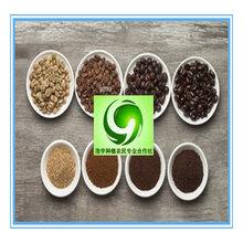 咖啡酵素粉酵素咖啡瘦身美容食品添加剂速溶茶粉固体饮料果蔬益生元酵素