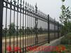 社区围栏工地围墙围栏栅栏锌钢铁艺农村院墙防护栏厂家现货供应