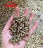 顆粒狀飼料加工草粉顆粒機專業廠家