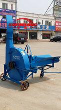 自动化苞米秸秆粉碎机专业铡草机价格优惠