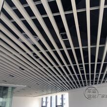 吉林氟碳铝单板厂家图片