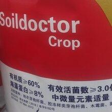 云南有機肥廠家排名微生物菌肥圖片