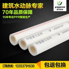 厂家直销PPR热水管63,工程用管,大口径自来水管,价格优惠