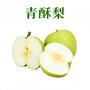 砀山青酥梨-直发-郑州图片