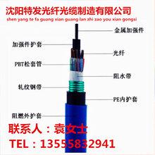 煤礦用36芯層絞光纜廠家MGTSV-36B1價格優惠煤礦專用光纜參數圖片