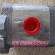 柳州PR2-010(附调压阀)齿轮泵HYDROMAX台湾新鸿图片