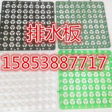 塑料蓄排水板生产厂家图片