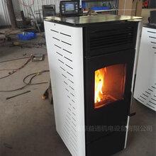 北京家用生物質顆粒真火壁爐專業快速圖片