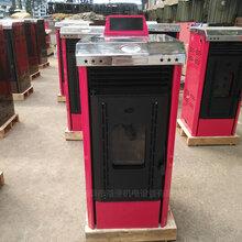 供应辽宁沈阳环保生物质颗粒取暖炉图片