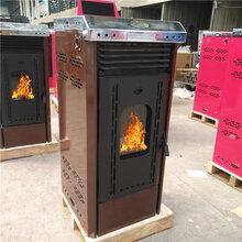 德州生物質顆粒取暖爐家用生物質顆粒采暖壁爐圖片