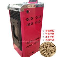 山东生物质颗粒暖风炉厂家批发生物质颗粒真火壁炉图片
