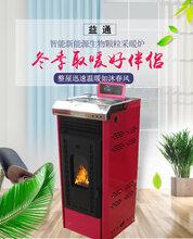 厂家直销生物质颗粒燃料取暖炉立式铸铁家用采暖炉子图片