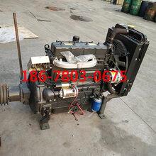 潍柴四缸直喷ZH4100P柴油发动机55马力柴油机图片