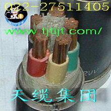 天缆集团小猫牌优质品牌的电力电缆产品ZRAYJV335+216严格执行国家标准图片
