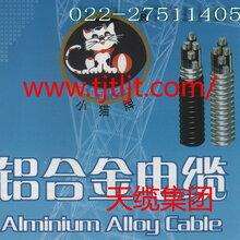 天纜集團小貓牌合金電纜采用新技術高品質的電線電纜產品YJLHYVYJLHYV22三加一芯圖片