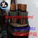 天缆集团小猫牌35KV矿用高压交联电线电缆MYJV22产品