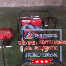 辽宁防汛打桩机生产厂家防汛专用小型植桩机