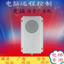 电梯语音报层器电梯语音广告机语音提示器语音报站
