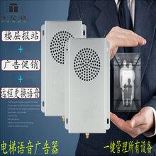 电梯通用报层器语音报站广告器远程更换广告机设备