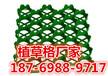 龙岩塑料植草格厂家