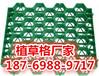 福州塑料植草格厂家