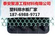 秦皇島塑料排水板廠家