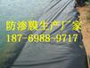 紹興藕池防滲膜廠家