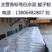山东淄博白水泥厂东森游戏主管直销国标32.5/42.5白水泥聊城白水泥批发价格图片