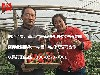 北京水果微商代理合作-北京草莓拿货货源-烟台苹果产地直供