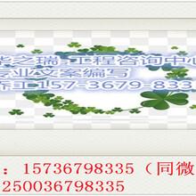 绥芬河做标书的公司标书制作精细图片