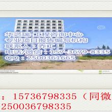 鹤峰县加急做标书的公司图片